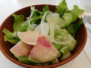 富山ランチブログ隊 ディアンドディパートメント TOYAMA  前菜 サラダ