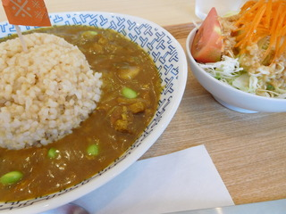 富山ランチブログ隊 お※食堂 和風カレーランチ