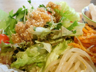 富山ランチブログ隊 ウッドペッカーカフェ 店 ワンプレート ランチ(鶏もも肉のハニーマスタークリーム煮)