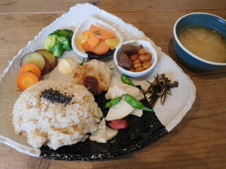 富山ランチブログ隊 豆こ食堂 やむなし やさいご飯
