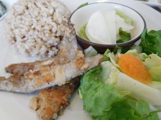 富山ランチブログ隊   くるみの森 日替わりランチ メイン魚 イワシのパン粉焼き 画像UP