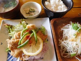 富山ランチブログ隊 かもめのジョナコ 日替わり定食 メイン 豚肉の竜田揚げ定食