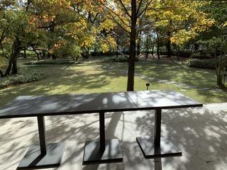 富山ランチブログ隊 シェ・ヨシ 店内からの景観
