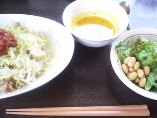 富山ランチブログ隊 Jack Rabbit Slim's ふわふわ豆腐ハンバーグ丼