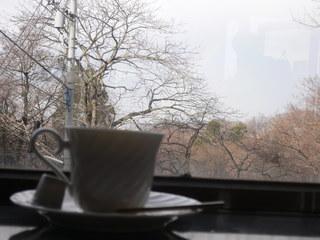富山ランチブログ隊 万里摩理(マリーマリー)富山市一望